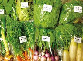自然栽培の野菜は直接農家さんから購入可能