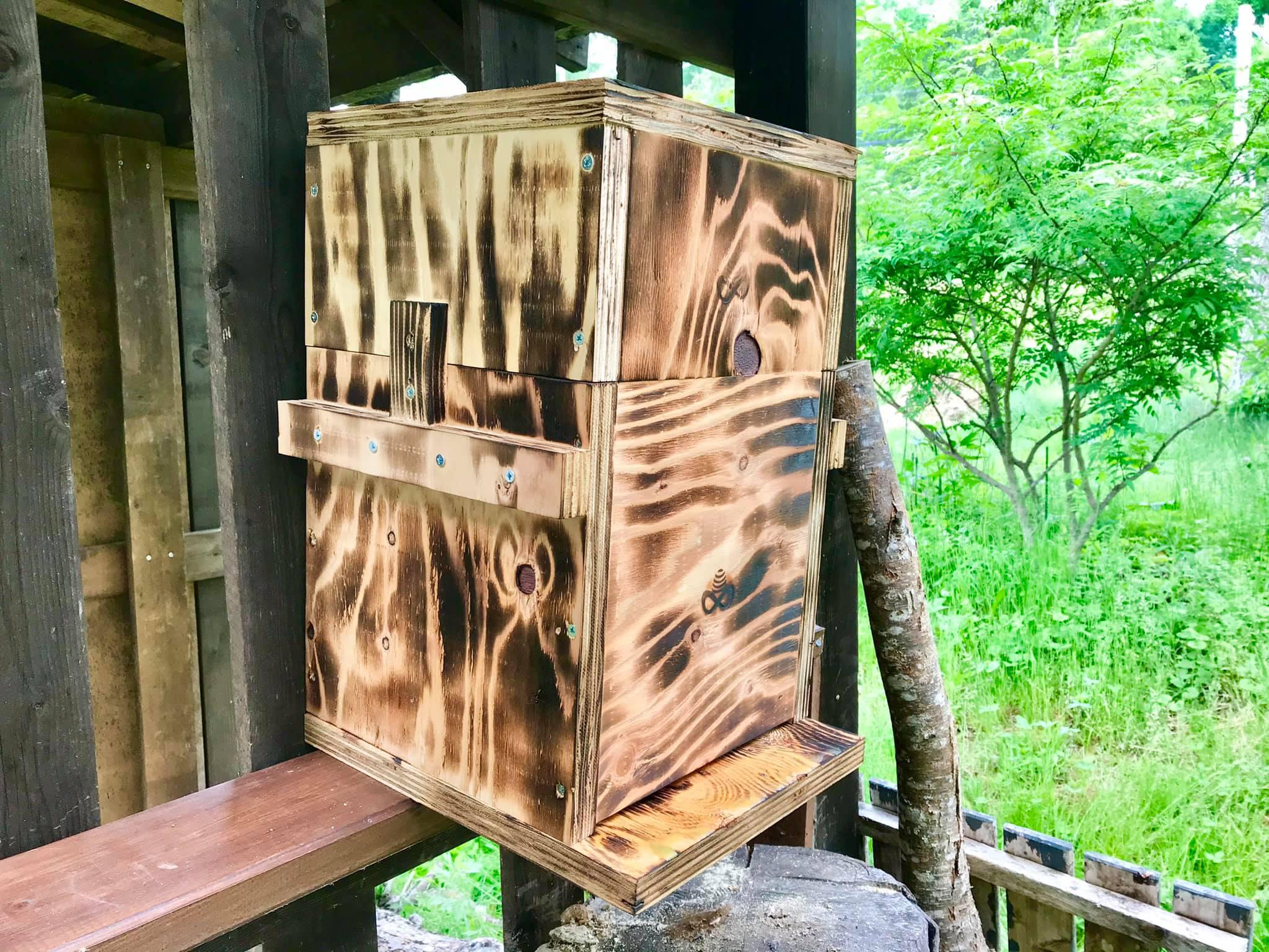 ニホンミツバチの巣箱を設置